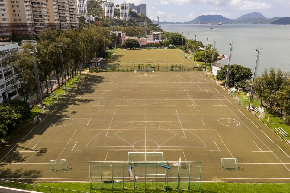 Artificial Pitch 1